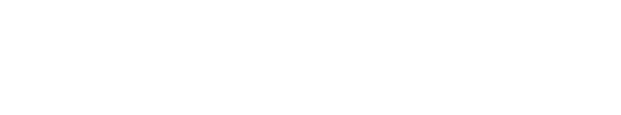 Southern Cross logo - white
